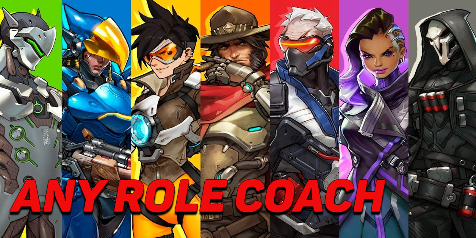 ANY ROLE COACH ThisIsHarley - e2p.com