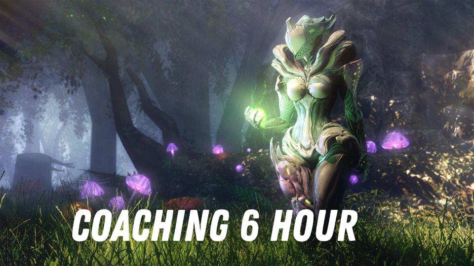 Coaching 6 Hours
