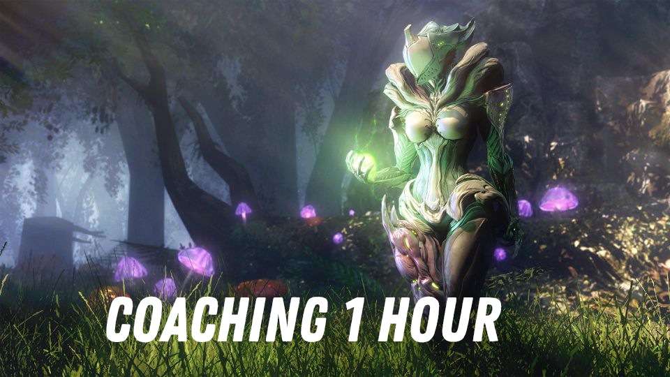 Coaching 1 hour