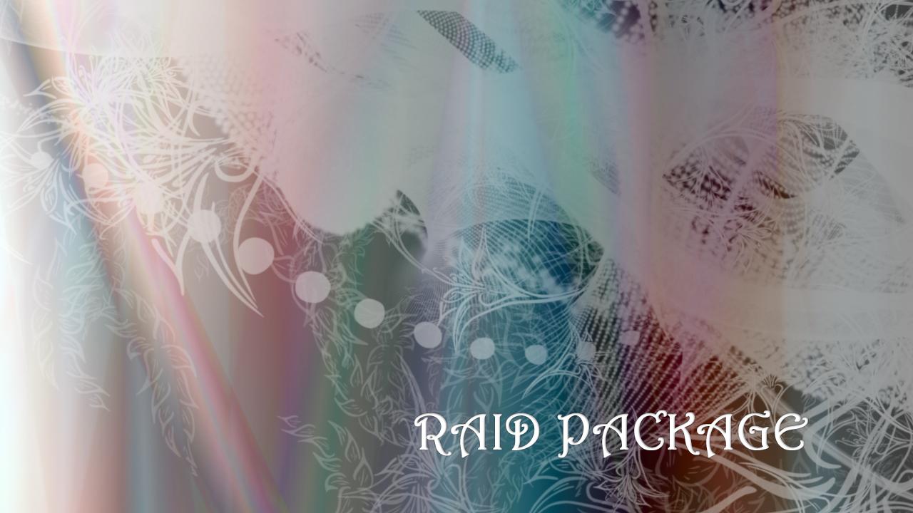 Raid package - 1+1