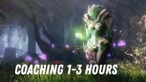 Coaching 1-3 hours